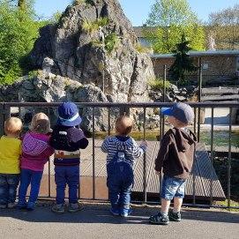 Auch die Affen sind bei den Kindern beliebt.