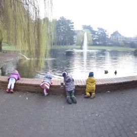 Im Mülheimer Stadtpark besuchen wir gerne die Enten.