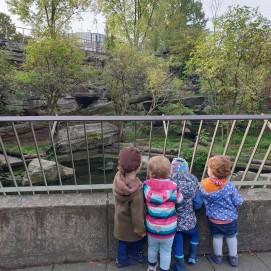 Zoobesuch-Kindertagespflege-Fischer