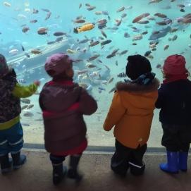 Kindertagespflege Fischer im Zoo